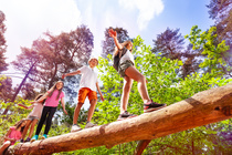 Kinder balancieren im Wald auf einem Baumstamm. Group of kids walk over big log in the forest. © Sergey Novikov