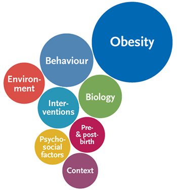 Picture: Indicator system of the population-wide system to monitor the factors relevant to childhood obesity. Source: © RKI
