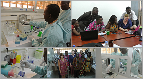 Extending diagnostic capacities for lassa virus in Togo, 2016. Source: Michael Nagel - GIZ