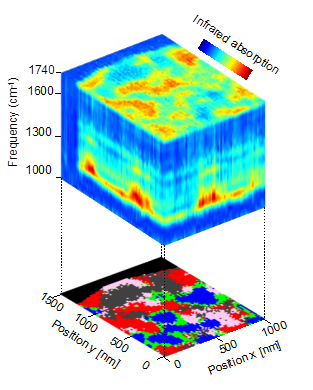Nanoscale-resolved hyperspectral infrared data cube of a polymer blend, comprising 5000 nano-FTIR spectra (top panel). Source: CIC nanoGUNE